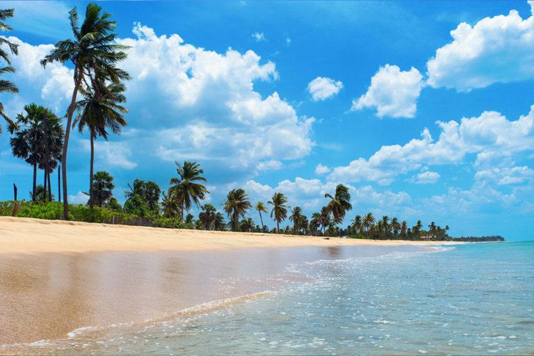 Sunbath on Sands Standard